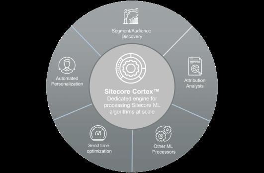 Sitecore Cortex